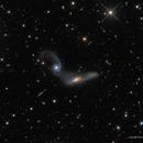 Arp 245 (NGC 2992 and NGC 2993),                                Russ Carpenter