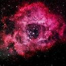 Rosette Nebula (NGC 2244),                                Gerould Kern