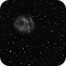 IC-5146-Cocoon-Nebula,                                Bob Scott