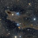 Dark Shark Nebula,                                BBRAUNCCP