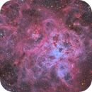 NGC 2070 - The Tarantula in True Color,                                Connor Matherne