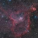 Heart Nebula,                                Ken-ichiro Tanaka