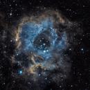 Rosette Nebula,                                Surfin_nurse