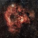 NGC 7822 Lion Head (Голова льва),                                Mikhail Shibaev (astrophoto) & Alexander Suhocky (photo processing)
