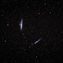 NGC 4631 Whale - NGC 4656 Hockey Stick,                                Pete Bouras