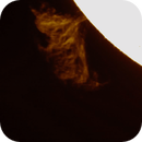 Solar Prominance gif,                                Tommaso Martino