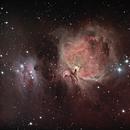 Orion Nebula,                                Awni Hafedh