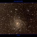 IC342,                                Udo Seidel
