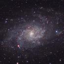 Return to the Triangulum Galaxy,                                John Michael Bellisario