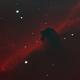IC434 Horsehead Bicolor,                                MLuoto