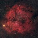 IC 1396 Elephant Trunk Nebula,                                Francois Charron