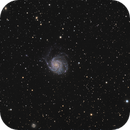 [Gal] M101 @Calern @Jack,                                Raypulsif