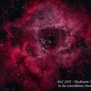 NGC 2237 - The Rosette Nebula   HOO,                                Paul Borchardt