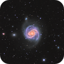 M100 Galaxy and friends Widefield,                                Steve Bemmerl