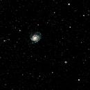 M101 - The Pinwheel Galaxy,                                DarkSwede