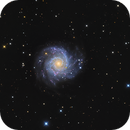 M 74,                                Mike Miller