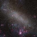 Large Magellanic Cloud & NGC 2070,                                Hojong Lin