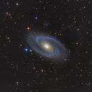 M81,                                jakob1234