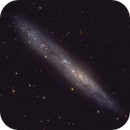 NGC 55 ,                                Diego Colonnello