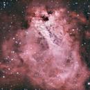 Omega Nebula - M17,                                jhawn