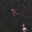 Orion Region Samyang 135 f/2.8,                                Elmiko