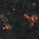 Around  Gran Nube de Magallanes  LMC ( NGC 2020, NGC 2014,  NGC 1955),                                Andrés González