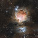Orion Nebula - Esprit 80 ED,                                Markus Bauer