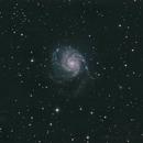 M101,                                Charles Ward