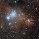 Christmas Tree Cluster and Cone Nebula,                                Hockeyscope