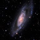 M 106 & NGC 4217,                                PJ Mahany
