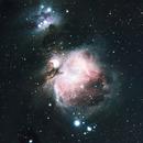 M42 - True Color,                                Cody Piscitelli