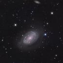 NGC 4725,                                Ron Stanley