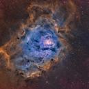Lagoon Nebula (M8),                                Ara