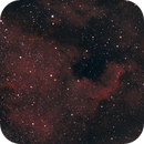 NGC 7000 North America Nebula,                                Bryan Shintani