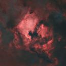 NGC 7000 & Sh2-119 STARLESS,                                gabriel
