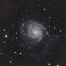 M101,                                Michael Finan