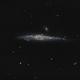 Whale Galaxy (NGC 4631),                                Bruce Donzanti