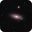 NGC2841 Tiger's eye galaxy,                                Benjamin Law