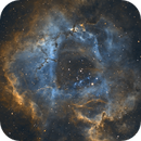 The Rosette Nebula, ngc2244,                                Eric Dreher