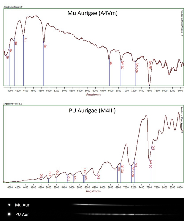 Spectral analysis of Mu and PU Aurigae,                                Johannes D. Clausen