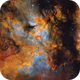 Butterfly IC1318,                                Tayson