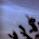 Komet C/2020 F3 Neowise,                                Florian_Pieper