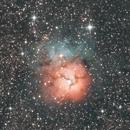 Trifid Nebula,                                Alessandro Iannacci