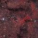 IC 1396a The elephants trunk nebula,                                Riedl Rudolf