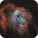 """The Pond - IC 410 and """"The Tadpoles"""" in H-alpha/OIII bicolor,                                pete_xl"""