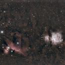 Orion et Cie,                                laup1234