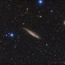 NGC4945,                                Ignacio Diaz Bobillo