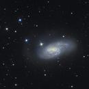 Galassia M66,                                Giovanni Benintende