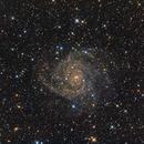 IC342 LRGB,                                Vince