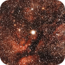 Nebulose attorno a Sadr (versione elaborata con Pixinsight),                                Giuseppe Nicosia